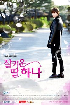 Title: A Well Grown Daughter, Hana (Korean Drama)